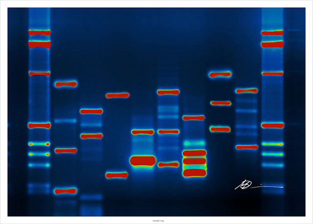 Does Entrepreneurship Need To Be In Your Genes?