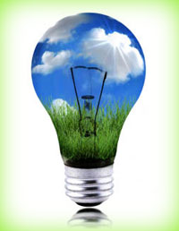 Here's What Small Business Leaders Can Learn From Big Businesses About Going Green